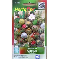 50 Semillas De Cactus...