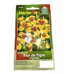 60 Semillas Flor De Tigre 1...